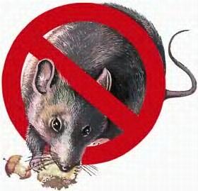 От крота, мышей, крыс